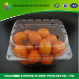 Haustier-Frucht-Verpackungs-Behälter