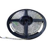 luz de tira do diodo emissor de luz da alta qualidade SMD3528 de 60LEDs/M com Ce, RoHS