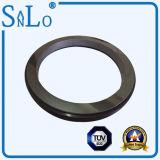 Sic-Ring für die mechanische Dichtung