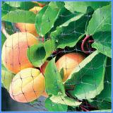 卸し売りナイロンはプラントまたは木のための鳥の庭のネットを落胆させる