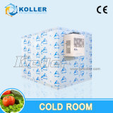 Chambre froide congelée rapide pour le bloc de glace faisant et préservant