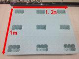 PET Ladeplatten-Form für Speicherung