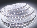 12V 5mm 미터 연약한 유연한 SMD 가벼운 LED 지구 백색 온난한 백색 파랑 당 3528 120LEDs