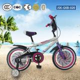 Bici de los niños de China con el certificado Jsk-Gkb-017 del En del CCC del CE