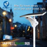 Luz solar do diodo emissor de luz da lâmpada de rua do poder superior IP65 com sensor de movimento