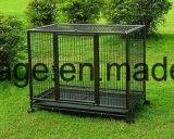 Cage de chien à cale chaude / cage de caisse carrée