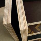 (1250X2500mm) La pellicola del Brown ha affrontato il compensato/compensato della cassaforma per materiale da costruzione