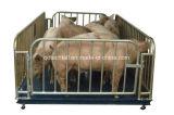 2900X1000mm гальванизированная панель загородки ярда овец