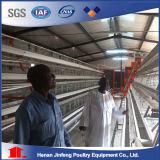 De Kooi van de Kip van de Laag van het Landbouwbedrijf van het gevogelte (Hete Galvanisatie)