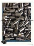 Сопла фильтра сопла/песка фильтра Ss 304 высокого качества (направьте изготовление)