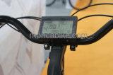 Moncaの200Wブラシレスモーターを搭載する新しい方法タイプよいデザイン電気自転車都市トリップ快適なEバイク