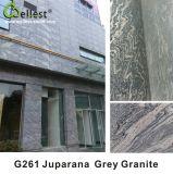 G261 Juparanaの灰色の花こう岩のタイル
