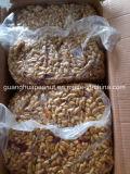 최신 판매 매운 땅콩
