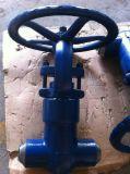 Válvula de porta forjada de alta pressão 2500lb