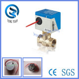 Experimentado fabricante OEM de la válvula de control de la bobina del ventilador (BS-818-20)