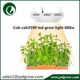 o diodo emissor de luz da planta 600W cresce a lâmpada para toda a planta interna