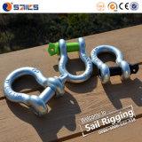 Sailrigging guter galvanisierter SchraubePin wir Anker-Fessel