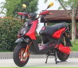E-Motorino di chilogrammo 1500watt & E-Bici & motorino elettrico