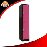 Le Cabinet en acier utilisé Two-Door de stade vêtx le casier