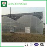 Invernadero del plástico del jardín del Multi-Palmo de la agricultura