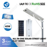 Bluesmart 12-120W 옥외 점화 정원 태양 전지판을%s 가진 태양 제품 LED 가로등