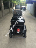 70 / 110cc Scooter / Handicap Tricycle / 3 Wheel Motorcycle (DTR-5B)