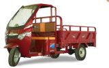 Tricycle électrique de trois roues, trois-roues de la cargaison à vendre de Chine