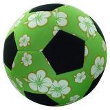 SBR Calcio (XLFB-183)