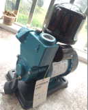 Bomba de água periférica de escorvamento automático do fio de cobre de Wedo 1awzb250k