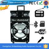 Aktiver Typ hohe Leistung drahtloser Bluetooth Lautsprecher Ms-12D
