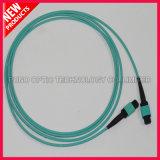 12 cabo de correção de programa ótico da fibra OM3 10G MPO