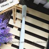 Beschikbare Tandenborstel van het Hotel van de Reis van de Verkoop van de fabriek de Directe