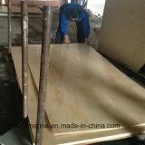 Irradiar el grado del pegamento C/C de la melamina de la madera contrachapada del pino