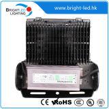 Luz de inundación del LED (BL-FL-100W-06)