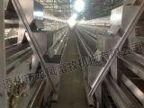 Gaiola galvanizada com ISO do certificado, GV de Chiken da boa qualidade