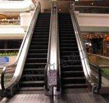 El OEM mantiene la escalera móvil 30degree con el certificado del Ce para la alameda de compras