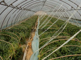 Grandes redes de la red del polietileno de la agricultura con nuevo HDPE del 100%