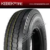 Toda la venta al por mayor radial de acero del neumático del neumático TBR del carro