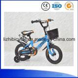 Велосипед детей велосипеда младенца милого велосипеда девушки миниый