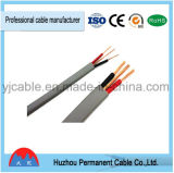 BVVB 중국에서 구리 코어 PVC에 의하여 격리되는 전기선 가격