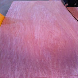 Хорошие Color и Grain Bintangor Veneer с B c d Grade