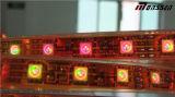 Illuminazione flessibile della fase del cambiamento 5050 RGB di colore