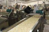 Weiße Knoblauch-Körnchen mit neuem Getreide 2017