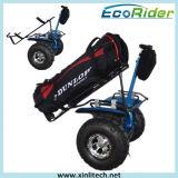 Motorino elettrico di uso di golf, veicolo personale di mobilità di marca di Ecorider, carrello di golf delle due rotelle