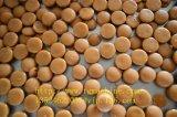 Linha de produção automática dos doces do Toffee com qualidade de Bset