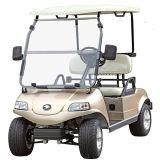 Automobile Del3022g-H, automobile di impianto elettrico di potere verde 2-Seater