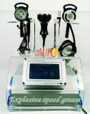 Machine de régime obésifuge de beauté rf de cavitation bipolaire du vide