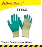 親指の十分に上塗を施してある乳液の手袋