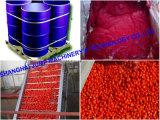 Capacidade nominal de gelatina de tomate / linha de produção de purê