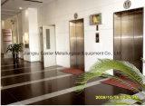 Сразу высокое качество лифта пассажира изготовления